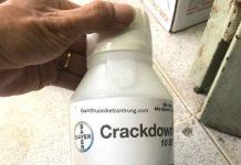 crackdown diệt gián